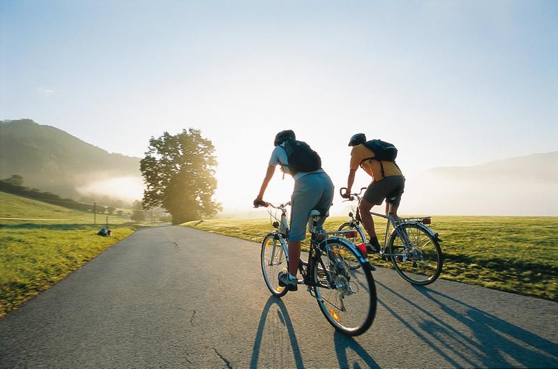 Сезон открыт: сколько стоят велосипеды в Житомире